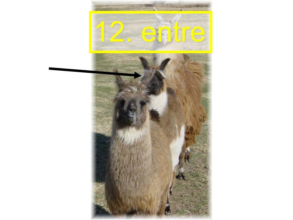 12. entre