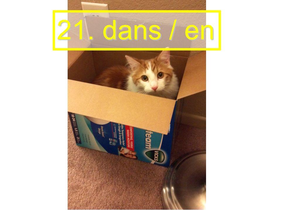 21. dans / en