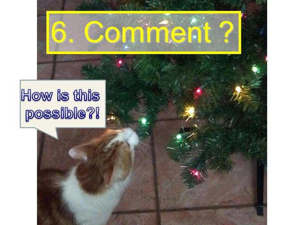 6. Comment