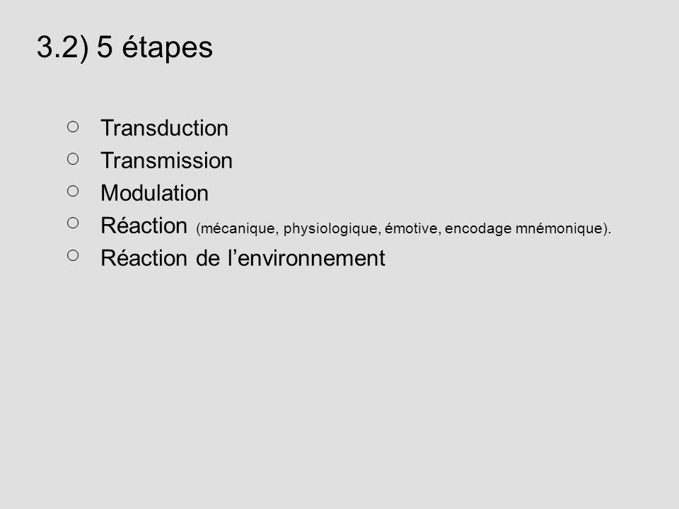3.2) 5 étapes Transduction Transmission Modulation Réaction (mécanique, physiologique, émotive, encodage mnémonique). Réaction de lenvironnement
