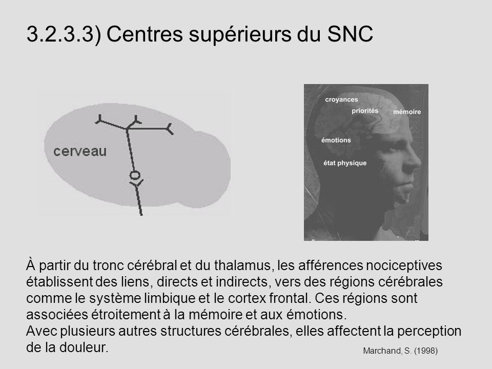 3.2.3.3) Centres supérieurs du SNC À partir du tronc cérébral et du thalamus, les afférences nociceptives établissent des liens, directs et indirects,