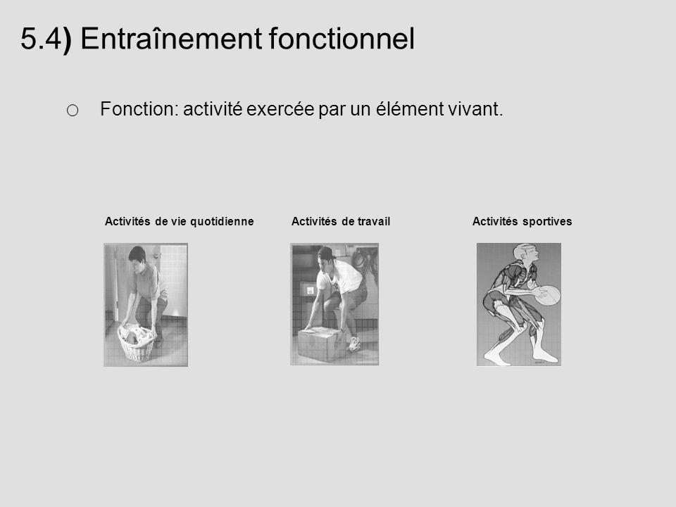 5.4) Entraînement fonctionnel Fonction: activité exercée par un élément vivant. Activités de vie quotidienneActivités de travailActivités sportives