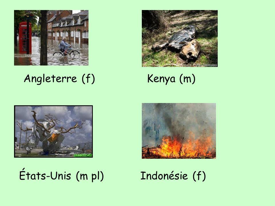 Angleterre (f)Kenya (m) États-Unis (m pl)Indonésie (f)