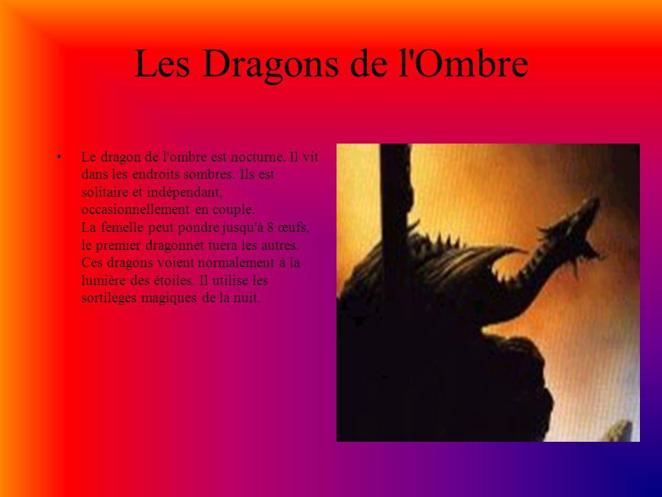 Les Dragons Noirs Les dragons noirs sont les plus secrets et les plus reclus du monde des dragons.