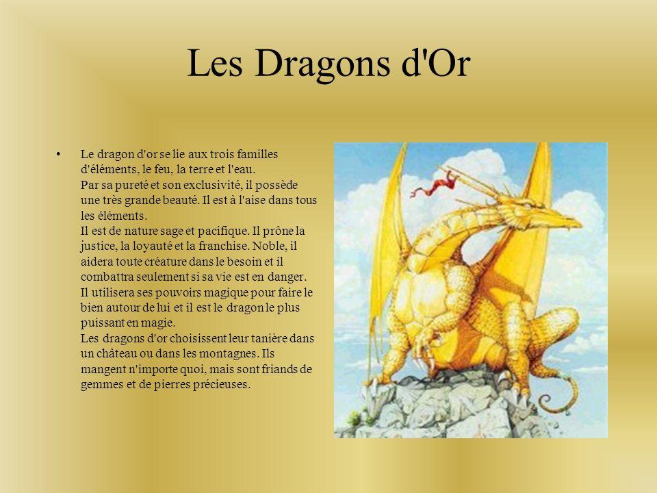 Les Dragons de l Ombre Le dragon de l ombre est nocturne.