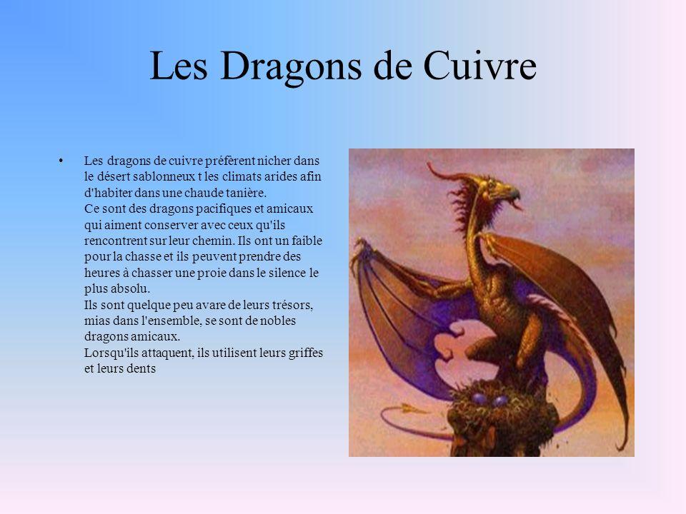 Les Dragons de Cuivre Les dragons de cuivre préfèrent nicher dans le désert sablonneux t les climats arides afin d habiter dans une chaude tanière.