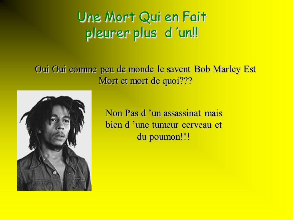 Bob Marley Mon modèle!!! Il n a pas que chanter du Reggae il a fait bien plus!... Il n a pas que chanter du Reggae il a fait bien plus!... VoiCi!! BoB