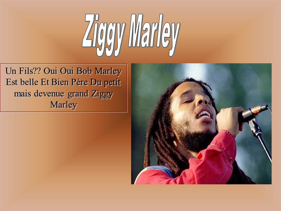 Avant de faire sa carrière solo Bob étais avec son groupe Bob Marley and the Wailers!Ils étaient très populaire en Jamaïque mais ici on ne les connais