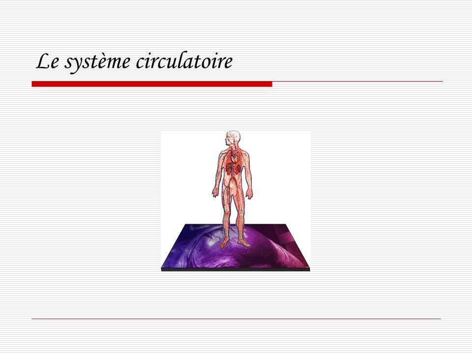 Transplantation du cœur artificiel