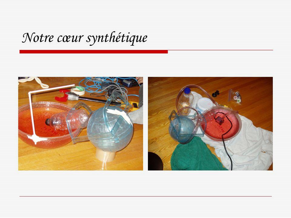 Notre cœur synthétique
