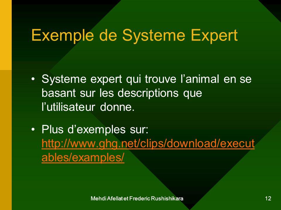 Mehdi Afellat et Frederic Rushishikara 12 Exemple de Systeme Expert Systeme expert qui trouve lanimal en se basant sur les descriptions que lutilisate