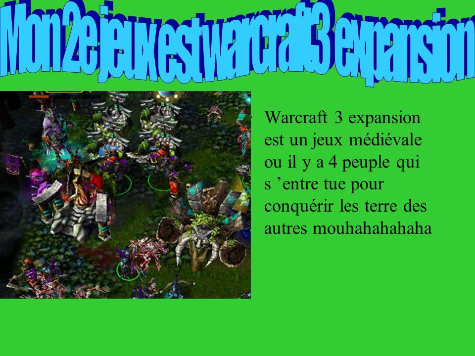 Warcraft 3 expansion est un jeux médiévale ou il y a 4 peuple qui s entre tue pour conquérir les terre des autres mouhahahahaha