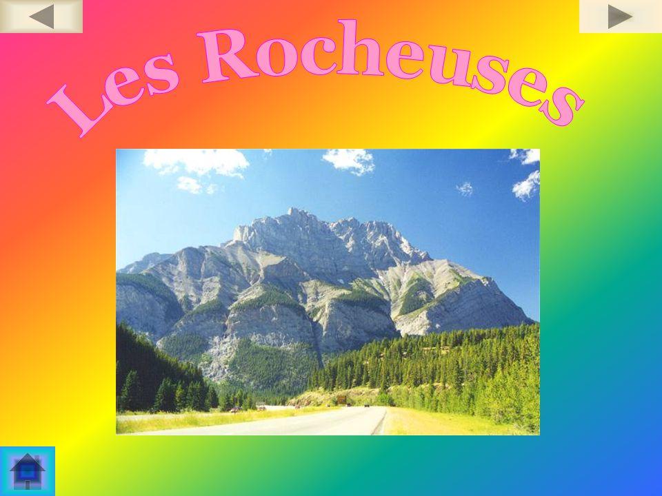 Le mercredi 29 octobre 2003 Ordinateur et Multimédia Travail présenté à monsieur Denis Brousseau Les Rocheuses Par: Caroline Laforge Polyvalente Dominique Racine
