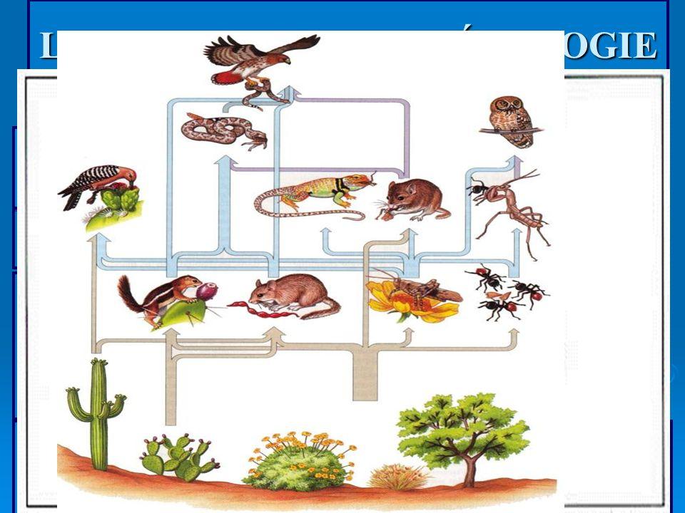 LES PLUIES ACIDES - ÉCOLOGIE Écosystème: densembles dynamiques formés par les organismes potentiellement interactifs dune communauté et par les facteu