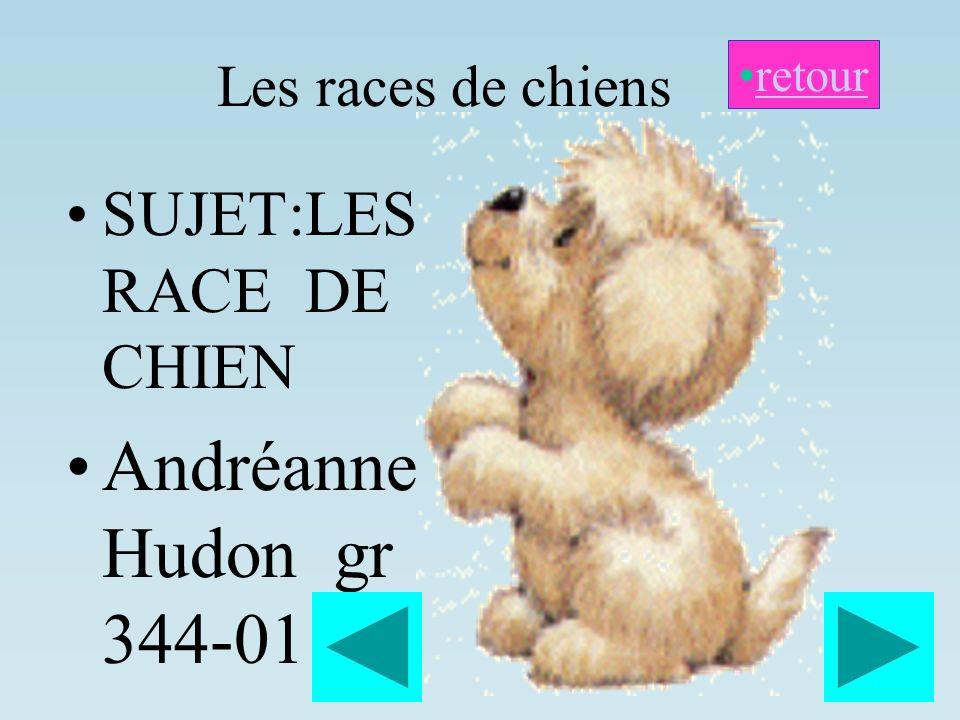 Les races de chiens SUJET:LES RACE DE CHIEN Andréanne Hudon gr 344-01 retour