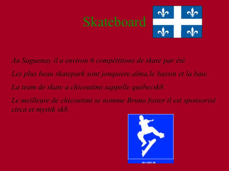 Skateboard Au Saguenay il a environ 6 compétitions de skate par été. Les plus beau skatepark sont jonquiere,alma,le bassin et la baie. La team de skat
