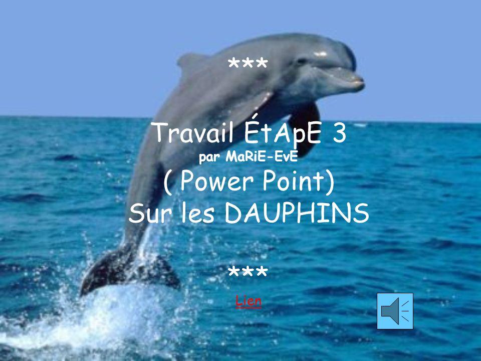 *** Travail ÉtApE 3 par MaRiE-EvE ( Power Point) Sur les DAUPHINS *** Lien Lien