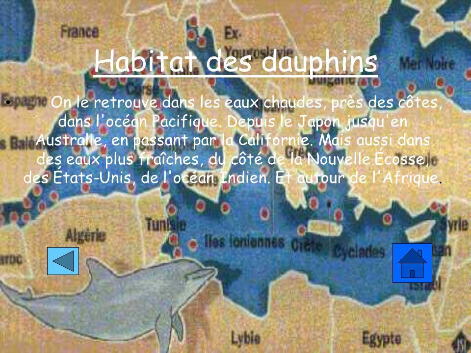 Habitat des dauphins On le retrouve dans les eaux chaudes, près des côtes, dans l océan Pacifique.