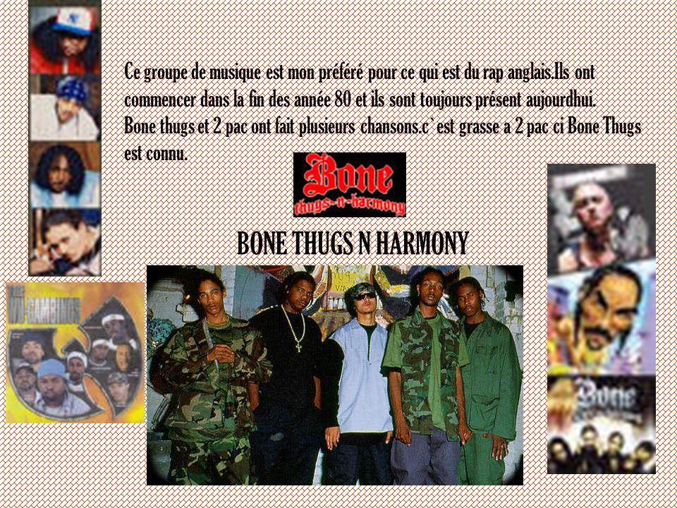 Les différences entre le rap français et le rap Anglais La différence entre le rap fracais et le rap anglais est belle et bien simple.Le rap anglais p