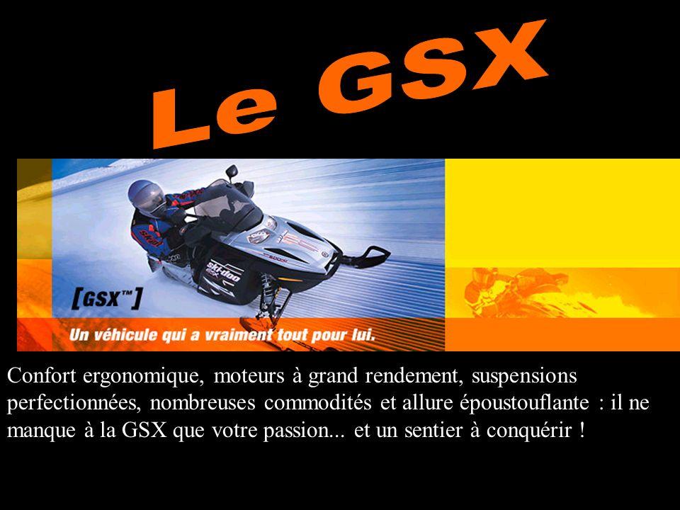 Confort ergonomique, moteurs à grand rendement, suspensions perfectionnées, nombreuses commodités et allure époustouflante : il ne manque à la GSX que votre passion...