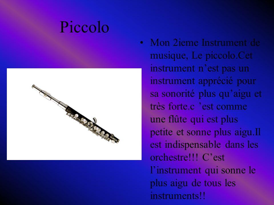 Piccolo Mon 2ieme Instrument de musique, Le piccolo.Cet instrument nest pas un instrument apprécié pour sa sonorité plus quaigu et très forte.c est comme une flûte qui est plus petite et sonne plus aigu.Il est indispensable dans les orchestre!!.