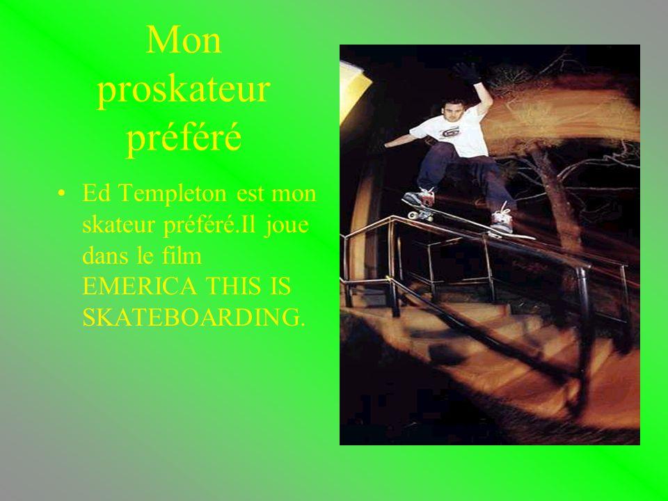 Les skatesparks Il y a 2 types de skateparks:les rampes et les pyramides et autres.