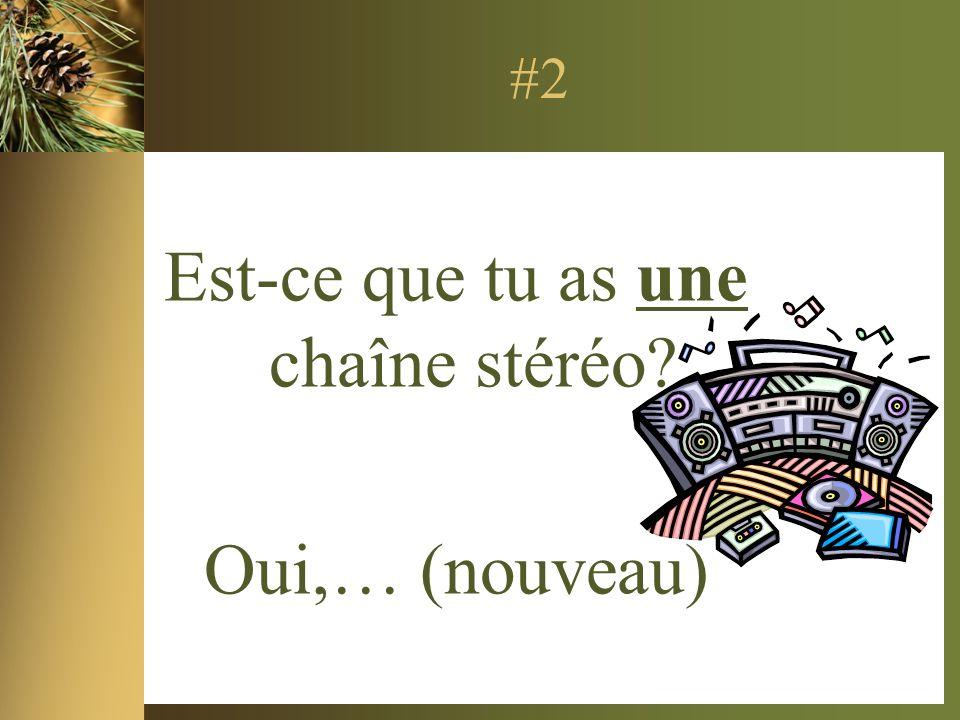 #2 Est-ce que tu as une chaîne stéréo? Oui,… (nouveau)
