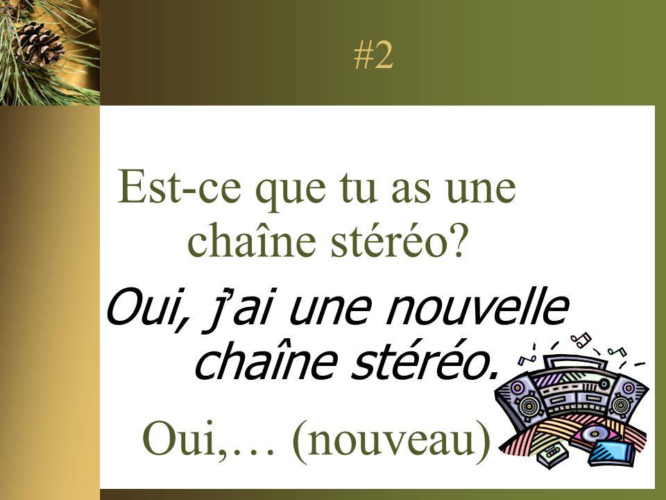 #2 Est-ce que tu as une chaîne stéréo? Oui,… (nouveau) Oui, jai une nouvelle chaîne stéréo.