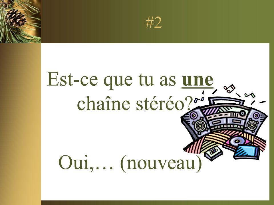 #2 Est-ce que tu as une chaîne stéréo Oui,… (nouveau)