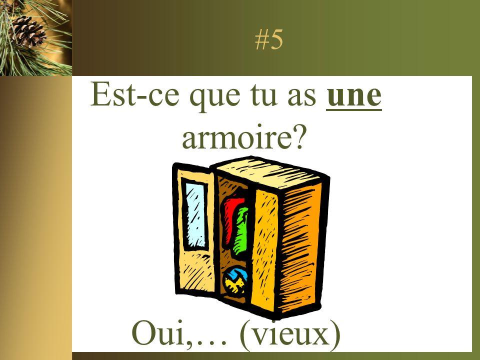 #5 Est-ce que tu as une armoire? Oui,… (vieux)