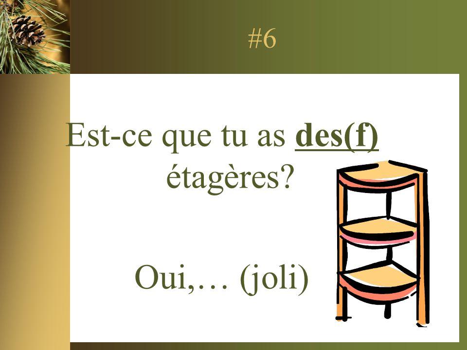 #6 Est-ce que tu as des(f) étagères Oui,… (joli)