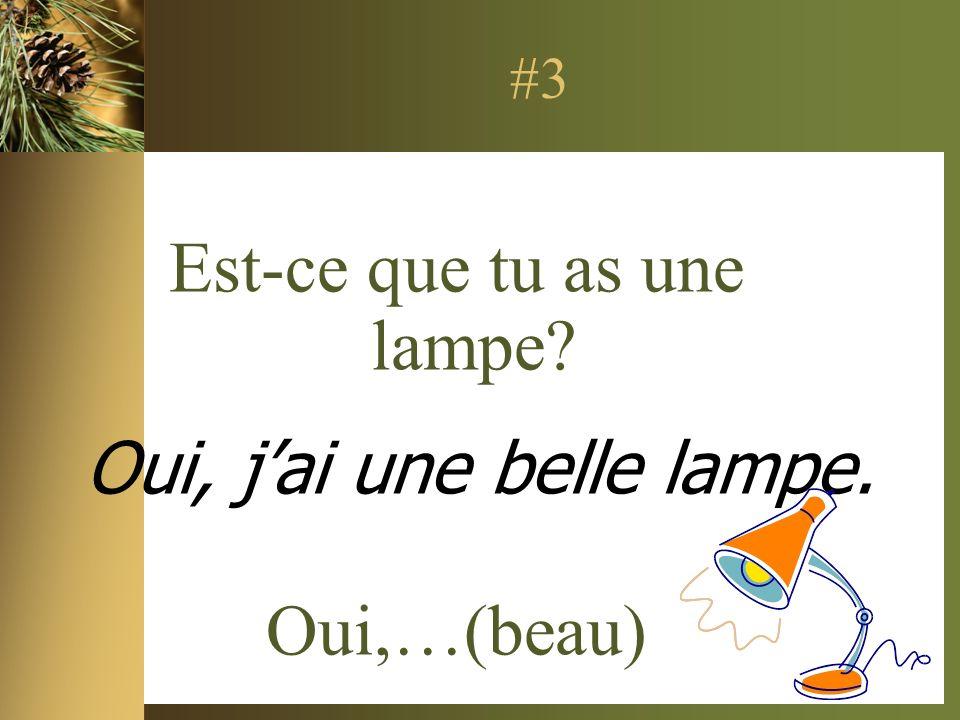 #3 Est-ce que tu as une lampe? Oui,…(beau) Oui, jai une belle lampe.