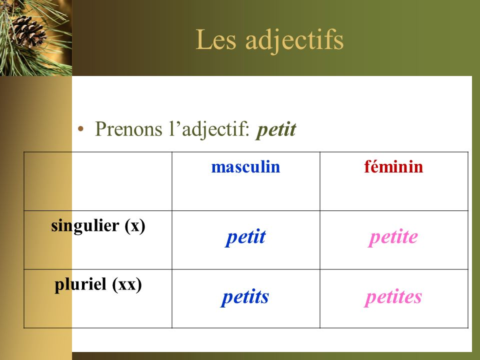 #3 E2: M. Diffère est grand. E1: Alors, Mme. Diffère nest pas __________; elle est ______________.