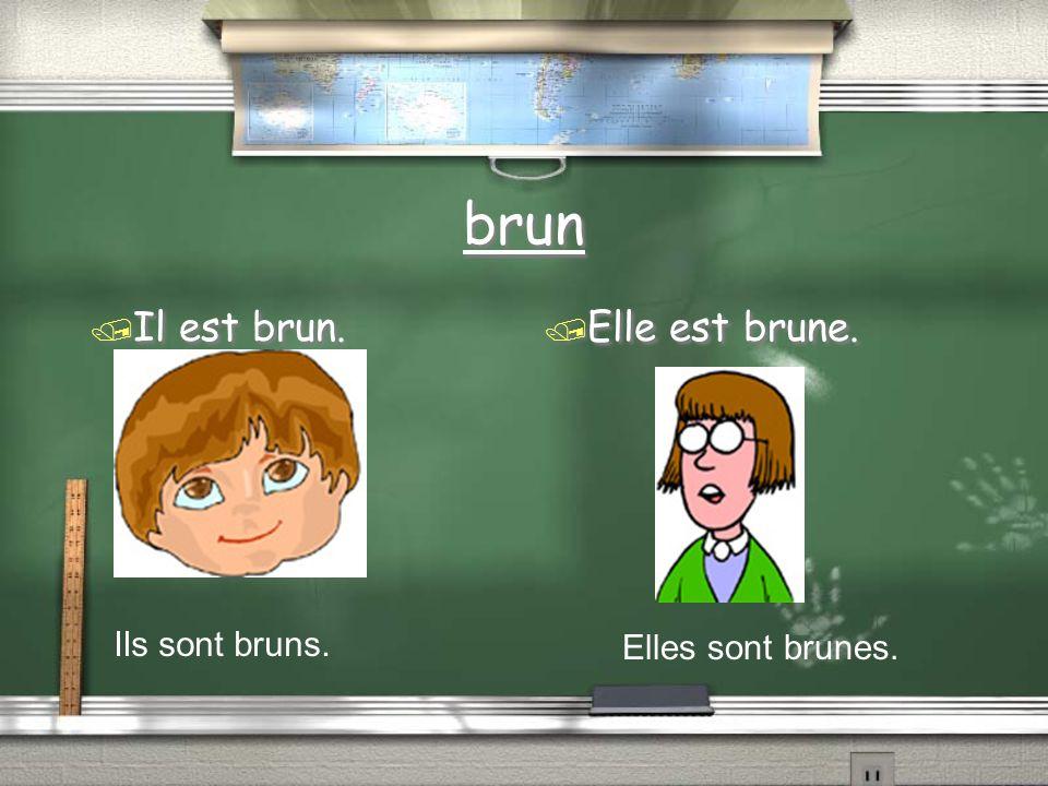 brun / Il est brun. / Elle est brune. Ils sont bruns. Elles sont brunes.