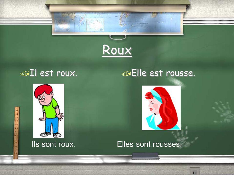 Roux / Il est roux. / Elle est rousse. Ils sont roux. Elles sont rousses.