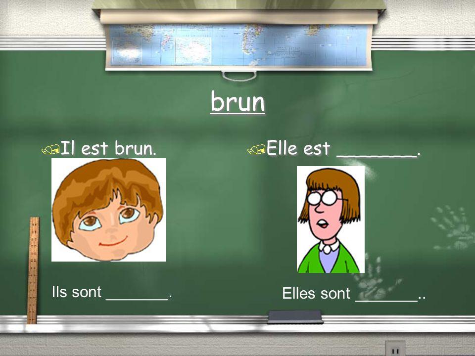 brun / Il est brun. / Elle est _______. Ils sont _______. Elles sont _______..
