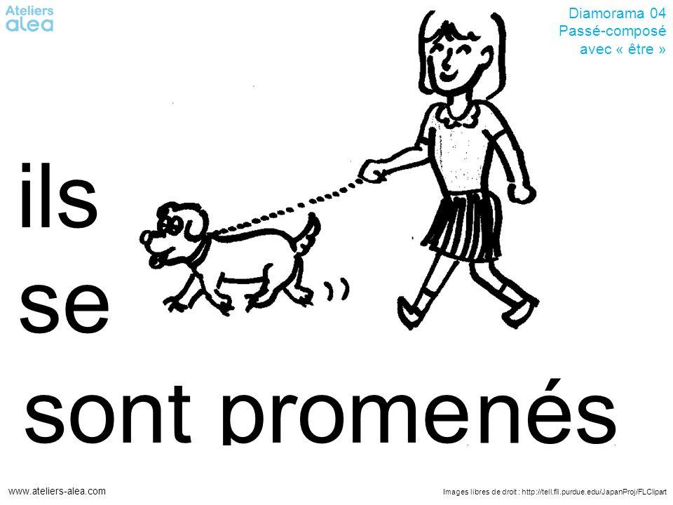 Images libres de droit : http://tell.fll.purdue.edu/JapanProj/FLClipart www.ateliers-alea.com Diamorama 04 Passé-composé avec « être » promesont ils se nés