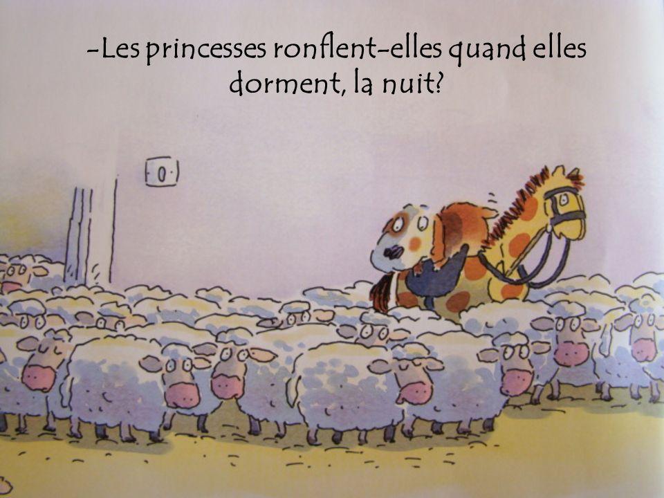 -Les princesses ronflent-elles quand elles dorment, la nuit