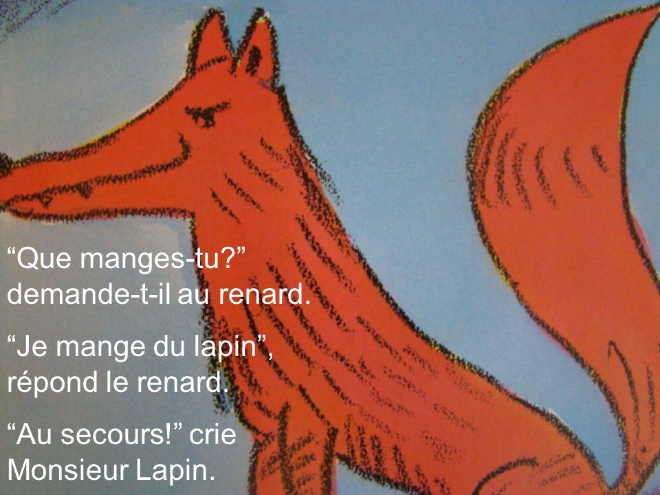 Que manges-tu? demande-t-il au renard. Je mange du lapin, répond le renard. Au secours! crie Monsieur Lapin.
