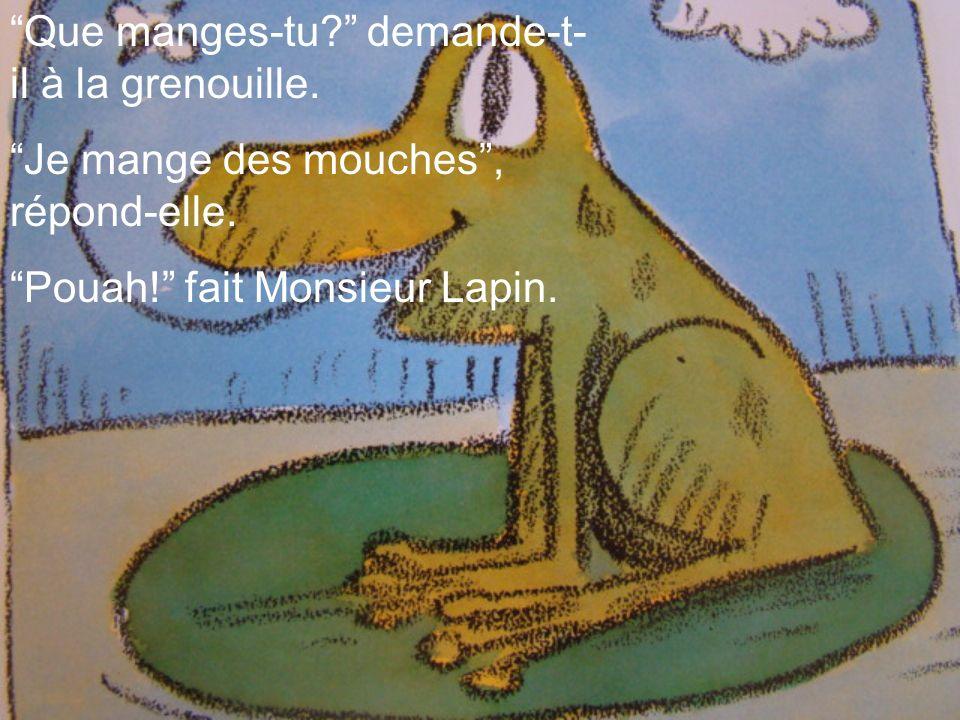Que manges-tu? demande-t- il à la grenouille. Je mange des mouches, répond-elle. Pouah! fait Monsieur Lapin.