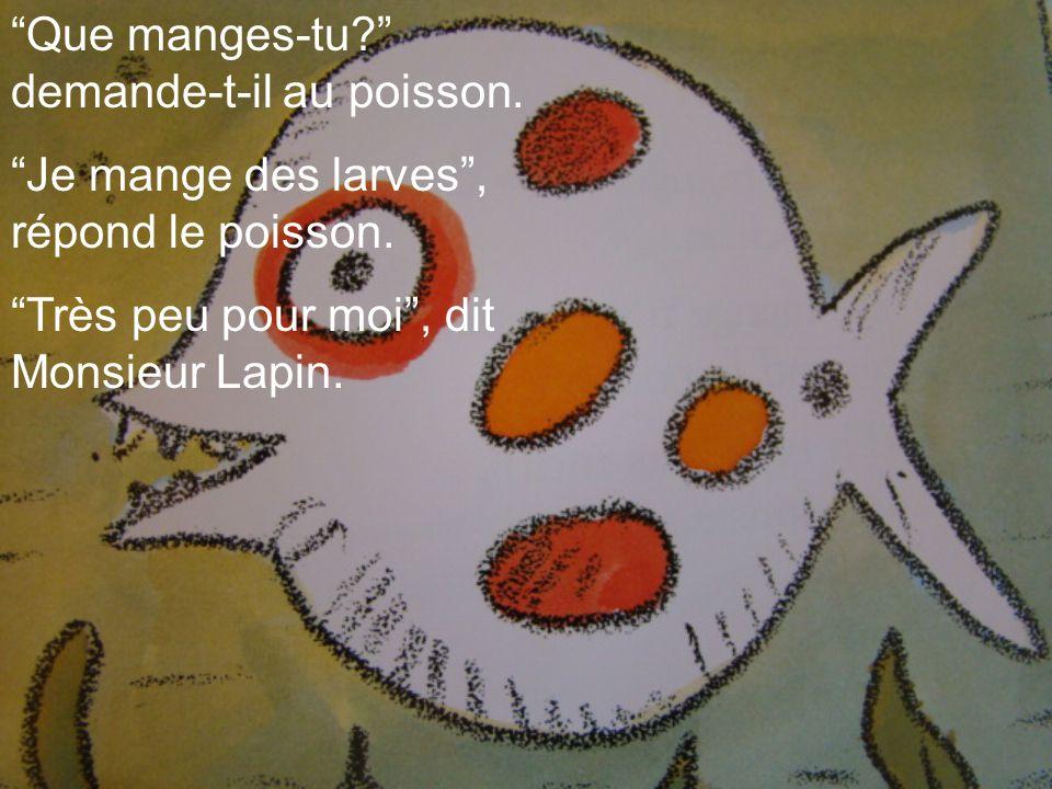 Que manges-tu? demande-t-il au poisson. Je mange des larves, répond le poisson. Très peu pour moi, dit Monsieur Lapin.
