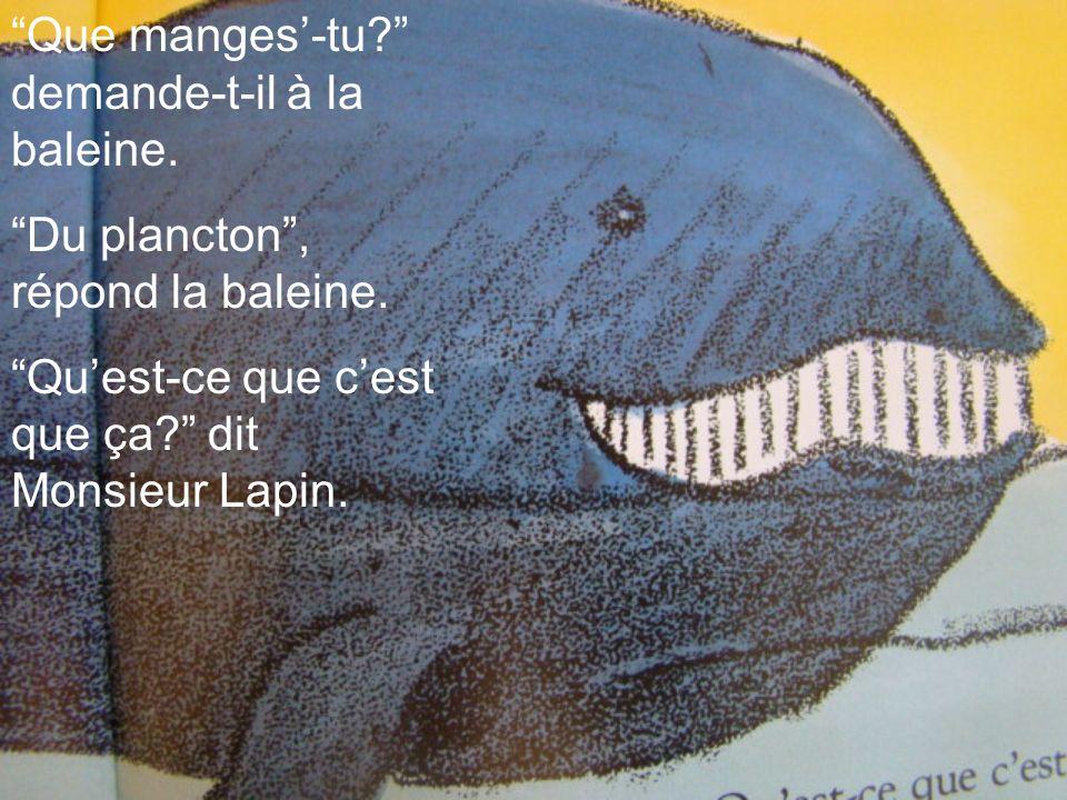 Que manges-tu? demande-t-il à la baleine. Du plancton, répond la baleine. Quest-ce que cest que ça? dit Monsieur Lapin.