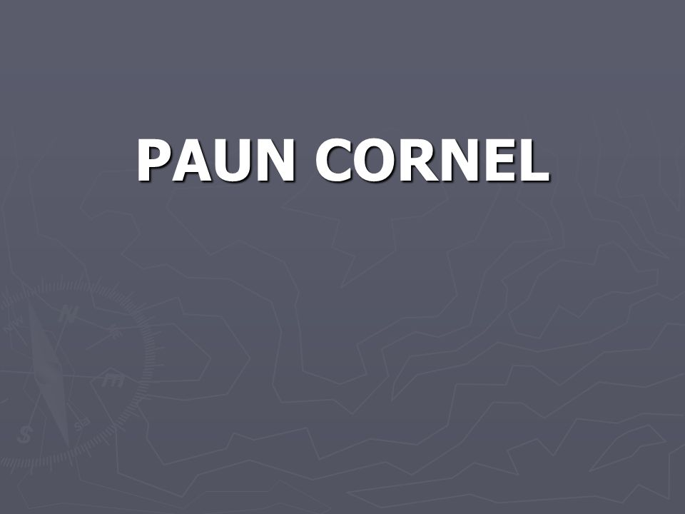 PAUN CORNEL