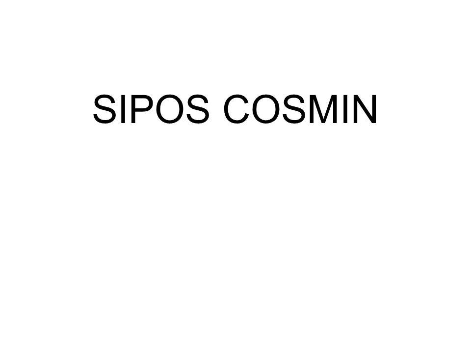 SIPOS COSMIN