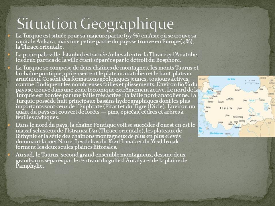 Les premiers Turcs d Anatolie Les Turcs, à l origine peuple nomade originaire d Asie, des plaines de Mongolie à celles de l Asie centrale, ont connu un vaste et continu mouvement d émigration vers l ouest du continent.