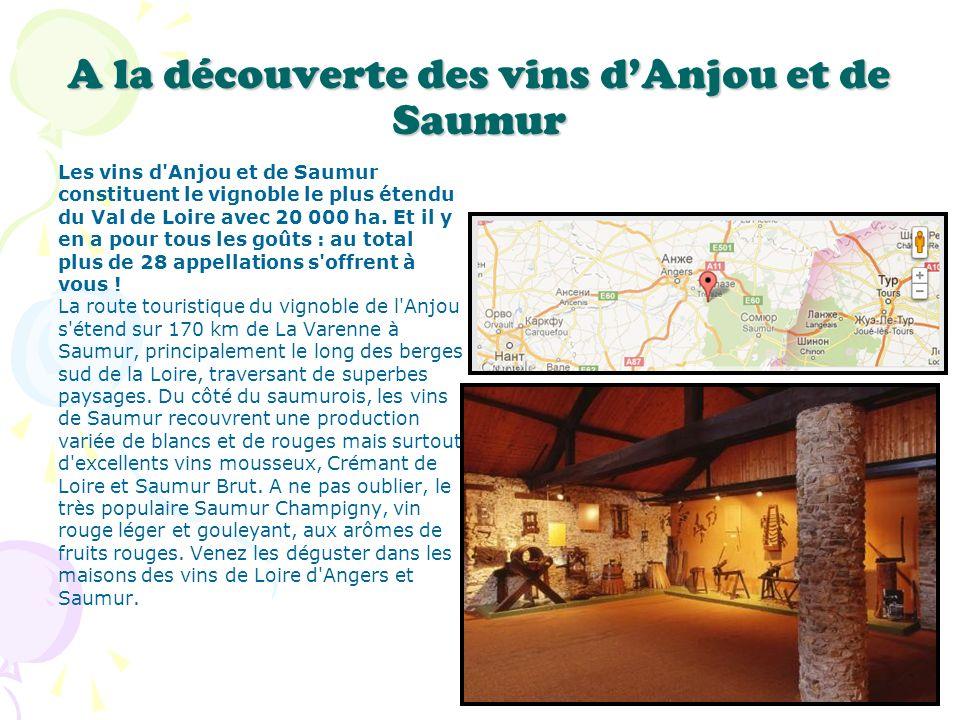 A la découverte des vins dAnjou et de Saumur Les vins d'Anjou et de Saumur constituent le vignoble le plus étendu du Val de Loire avec 20 000 ha. Et i