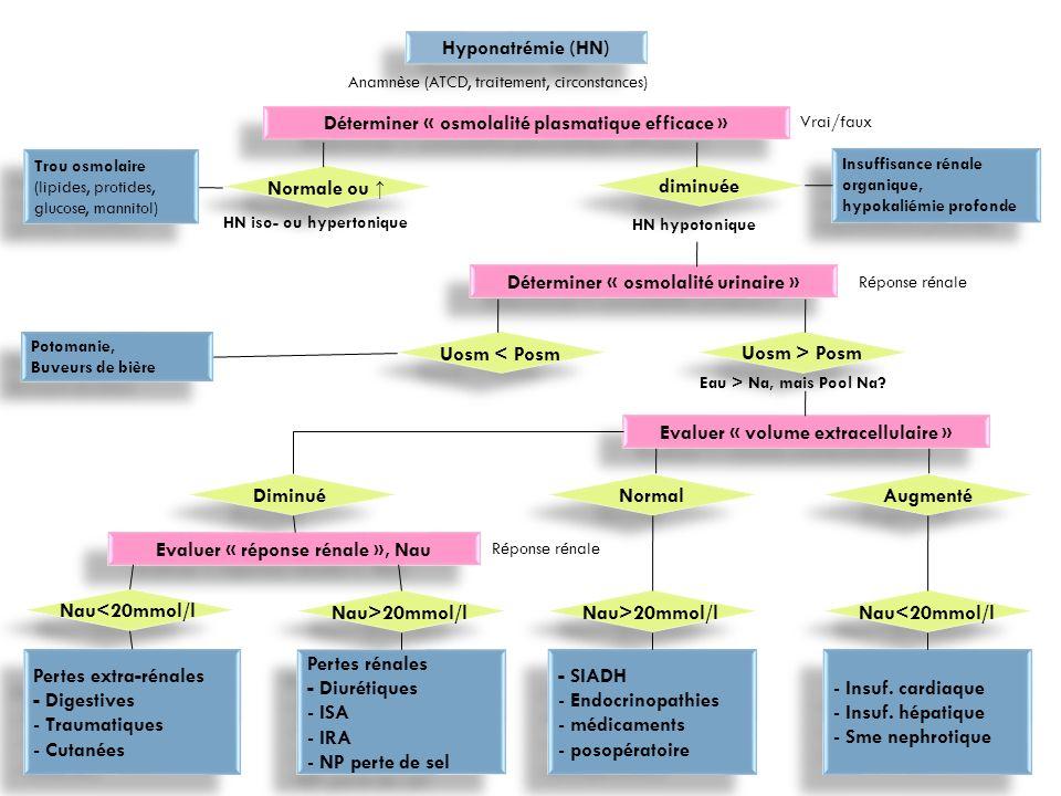 Cas clinique - 4 Dans le sang artériel : Natrémie 169mmol/L ; Chlorémie 127 mmol/L; Kaliémie = 4 mmol/L; Glycémie = 6 mmol/L; CO2tot = 28 mmol/l; Azotémie = 1,8g/L ou 30 mmol/L; Créatinine = 200 mol/L ou 31 mg/L; Protidémie = 79 g/L; Hématocrite = O,53 ; P osmotique = 380 mOsmkg H2O Sur un échantillon d urines : Urée = 640 mmol/L; Sodium = 8 mmol/L; Potassium = 15 mmol/L; P osmotique = 710 mOsmkg H2O