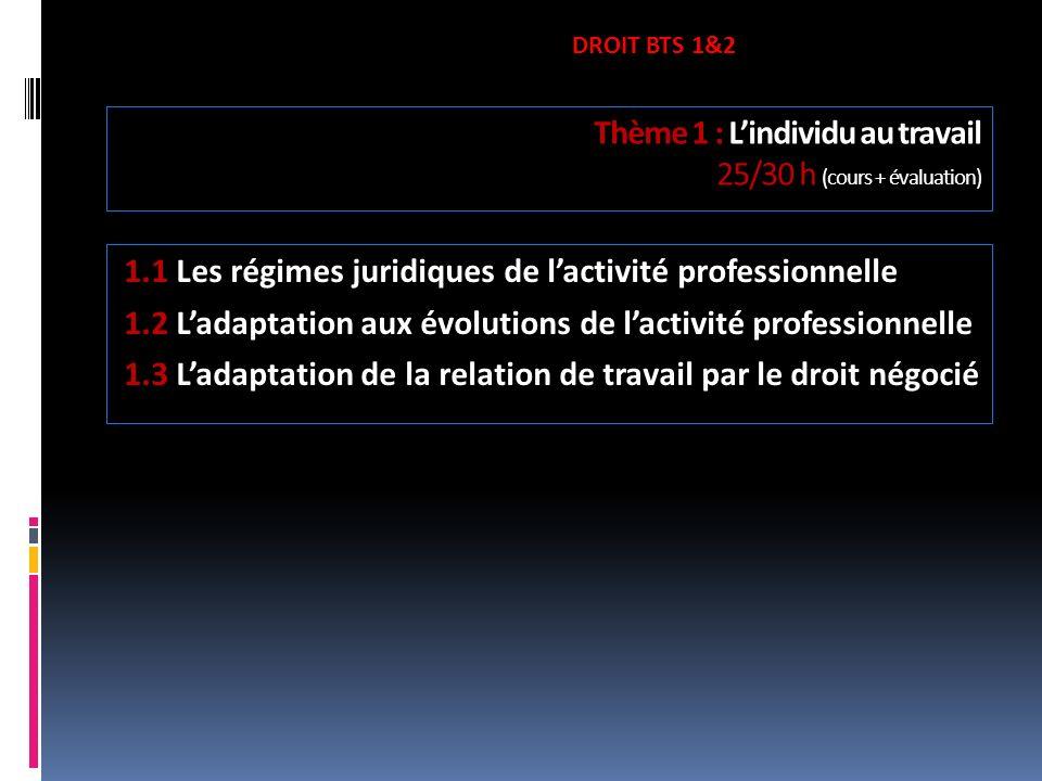 Thème 1 : Lindividu au travail 25/30 h (cours + évaluation) 1.1 Les régimes juridiques de lactivité professionnelle 1.2 Ladaptation aux évolutions de