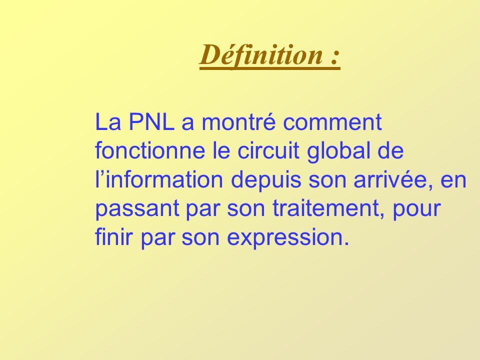 Définition (suite) : En premier lieu, quand linformation arrive à un individu, elle est filtrée par trois filtres que sont les cinq Sens, le Tri dinformation et la Taille de découpage.