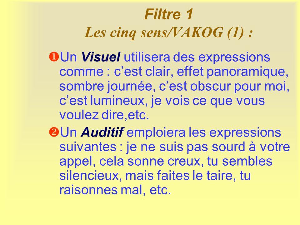 Filtre 1 Les cinq sens/VAKOG (2) Un Kinesthésique utilisera des expressions en rapport avec les verbes de mouvement : bouger, sauter, etc.